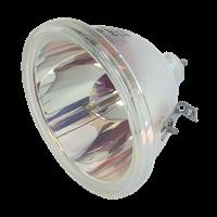 BARCO OVERWIEV OV-701 Lampe sans boîtier