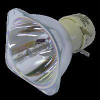 DEPTHQ WXGA HD Lampe sans boîtier