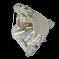 DONGWON DVM-J90M Lampe sans boîtier