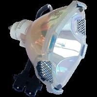 EIZO IX460P Lampe sans boîtier