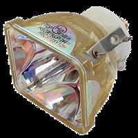 IWASAKI HSCR165Y10H Lampe sans boîtier