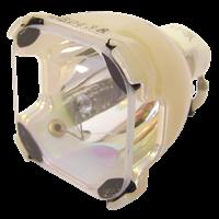 KNOLL HT221 Lampe sans boîtier