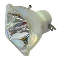 LG PT-LB2VE Lampe sans boîtier