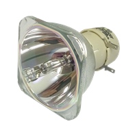 OPTOMA HD140X Lampe sans boîtier