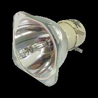 OPTOMA W319 Lampe sans boîtier