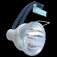 PHOENIX SHP101 Lampe sans boîtier