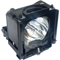 SAMSUNG HL-S6186WX/XAA Lampe avec boîtier