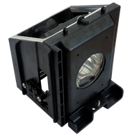 SAMSUNG SP-42L6HRX/XAX Lampe avec boîtier