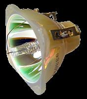 VIDIKRON MODEL 75 Lampe sans boîtier