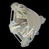 YAMAHA DPX 1100 Lampe sans boîtier